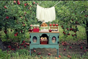 OhSoPrintable.com styled this beautiful apple picking party.